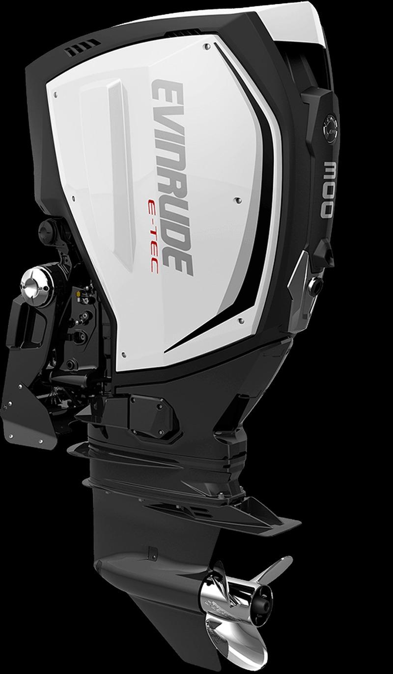 Evinrude G2 E300